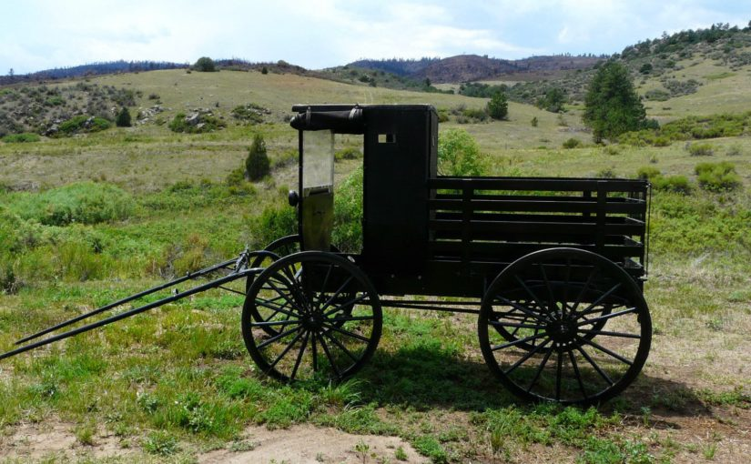 Amish Wagon: You've always wanted one. You know it.