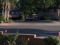 Sighting:The Neighborhood DeLorean
